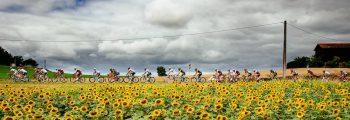 Anuncio do Acompanhamento diário Tour de France 2018